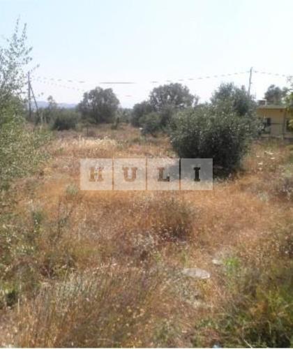 Οικόπεδο 258 τ.μ. προς πώληση, Γλυκά Νερά