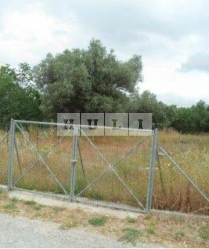 Οικόπεδο 205 τ.μ. προς πώληση, Μαρούσι (Παράδεισος)